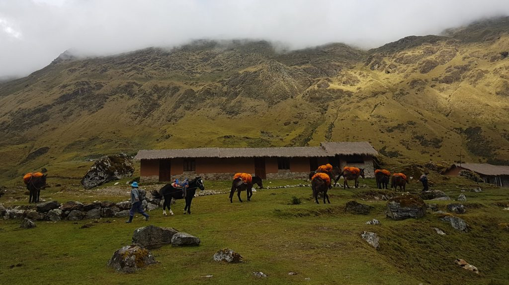 mountain lodges of Peru horses Andean trekking