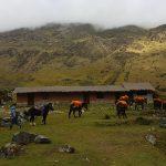 mountain lodges of Peru horses Andean trekking